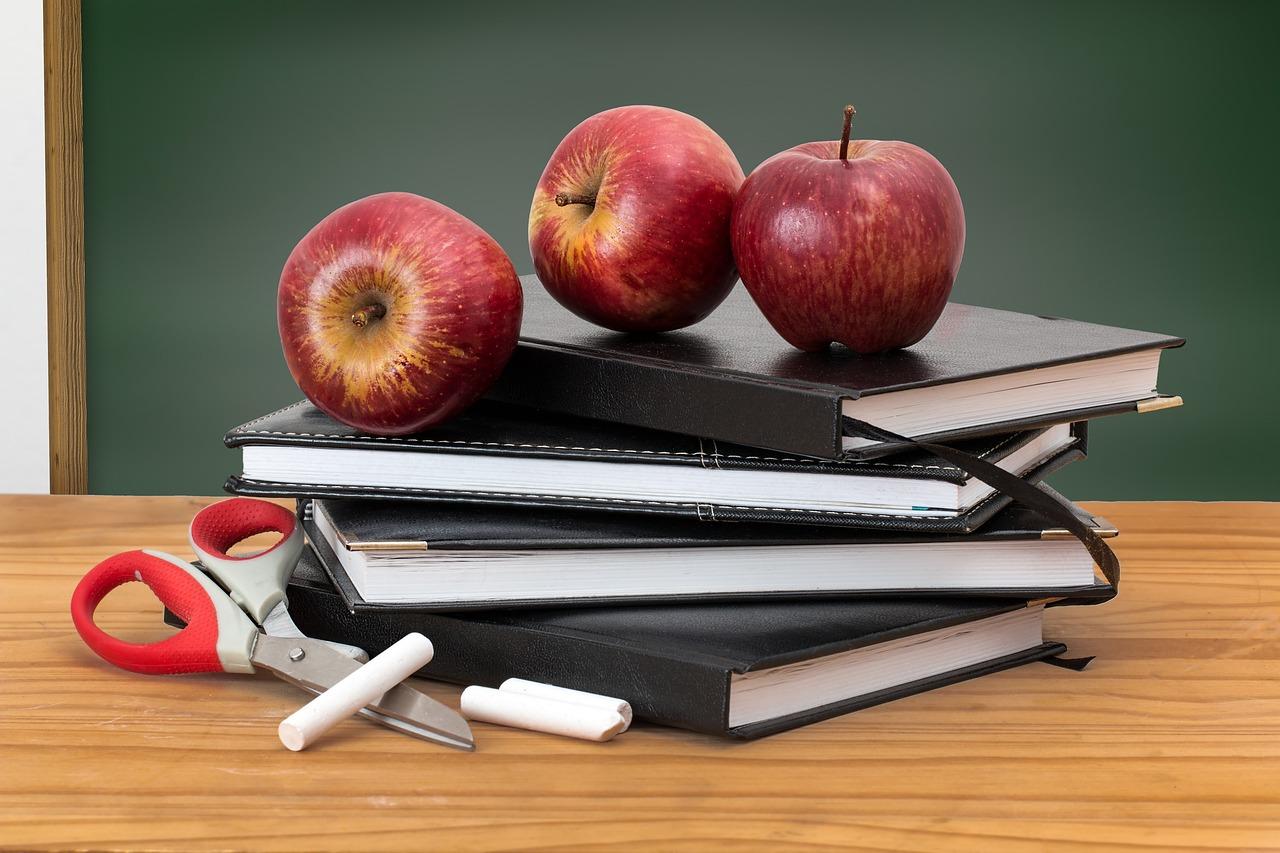 Histoire des cours particuliers et du soutien scolaire